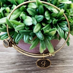 "Alex and Ani ""G Letter"" Charm Bracelet"